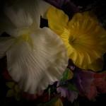 large spring vase flowers closeup
