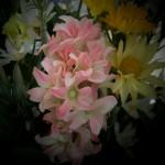spring flower mixture vase