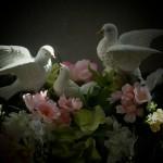custom.saddle.009 doves
