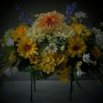 summer saddle.003 daisies