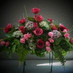 summer saddle roses