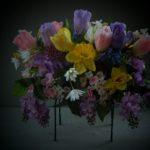 spring saddle tulips